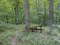 Picnic table graveyard, Lake View Park, Charleston, IL