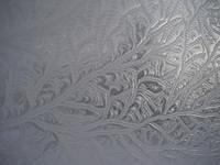 Ice crystals on my upstairs window.